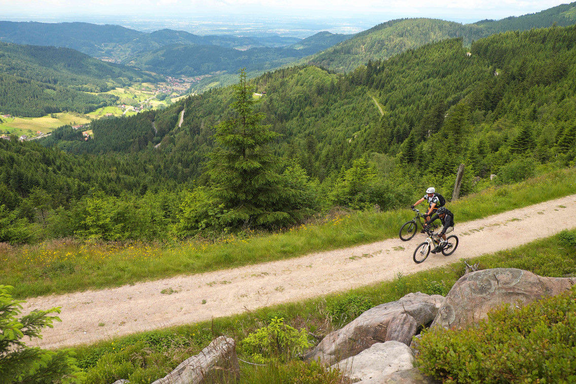 MTB an Hornisgrinde Nationalparkregion