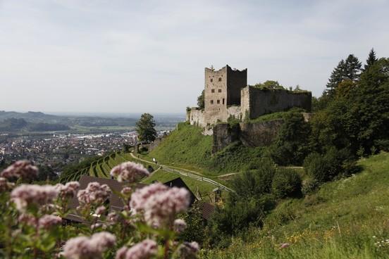 Ruine Schauenburg