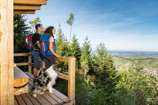Wandern in Durbach