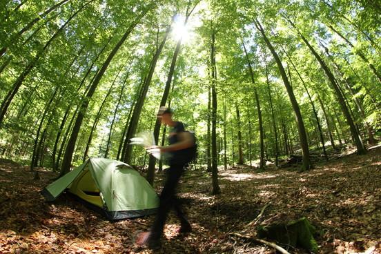 Trekking-Schwarzwald.jpg