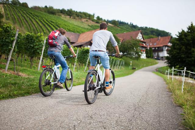 Radfahren in den Weinbergen