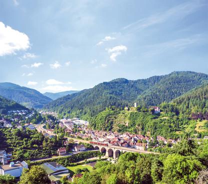 Blick vom Rebberg, Hornberg