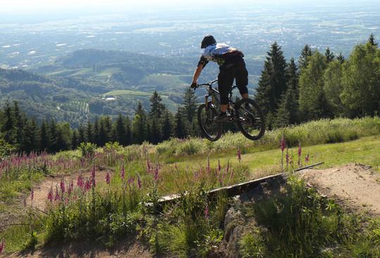 Mountainbiking auf Alpirsbacher Schwarzwaldtrail